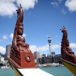 Waka fleet arrives in Auckland